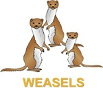 Weasels w Text