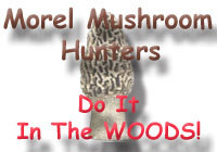 Morel Hunters do it in the Woods!