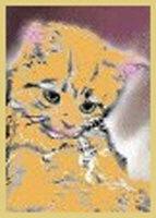 More Kitten