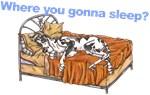 CH Where you gonna sleep