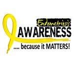 Awareness 2 Endometriosis Shirts & Merchandise