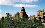 Southern Arizona-Chiricahua Mountains
