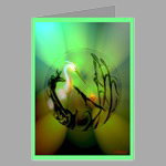 Greeting Cards  (Package of 10) 20.00