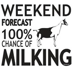 Weekend Forecast Milking Alpine Goat