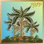 12 Tribes Israel Joseph
