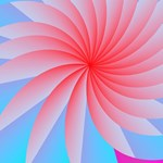 2017 Pink Passion Flower Calendar