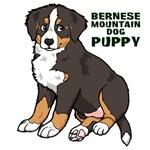 Sitting Bernese Mountain Dog Puppy