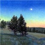 Moonlit Juniper