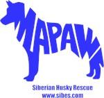 MaPaw Husky-blue