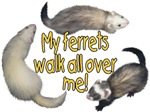 Ferrets walk over me