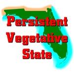 Persistent Vegetative States