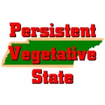 Tennessee - Persistent Vegetative State