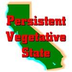 California - Persistent Vegetative State