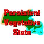 Massachusetts - Persistent Vegetative State