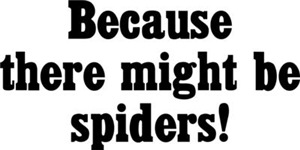 Because There Might Be Spiders