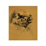 Sheepdog & Terrier