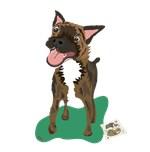 Brindle Terrier