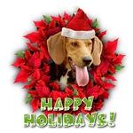 Penn-MaryDel Foxhound