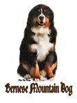Bernese Mountain Dog Breed Gifts