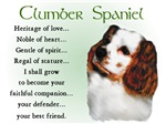 Clumber Spaniel Gifts / Merchandise