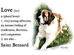 Saint Bernard Love Is