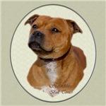 Staffordshire Bull Terrier Art