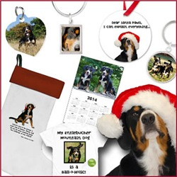 Pawsome Stocking Fillers