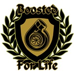 Boosted For Life Design