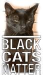 Black Cats Matter