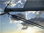 Cruising Lealea, Life in the Sticks - Sailing imag