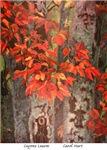 Cayenne Leaves, Carol Hart