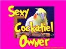 Sexy Cockatiel Owner