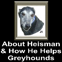 ABOUT HEISMAN AND HOW HE HELPS GREYHOUNDS