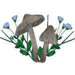 Brown Mushrooms Flax Flower