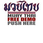 Thai boxing shirts: Free Demo - Push Here