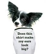 Funny Pet T-Shirts!