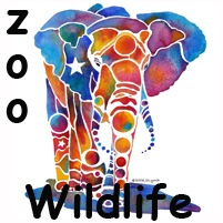 Zoo Art Animals