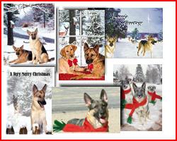 German Shepherd Holiday