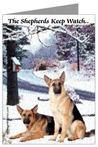 German Shepherds Keep Watch
