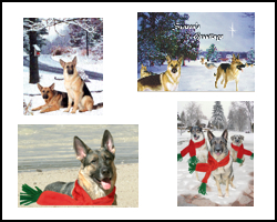 GSD Holiday Cards, stamps, more!