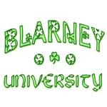 Blarney University