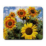 Flower Theme Gift Mouse Pads