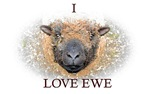 Sheep items - I Love Ewe
