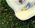 Sink on the Grass