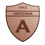 Copper Arizona 1912 Shield