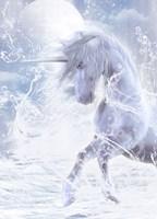 Unicorns & Pegasi