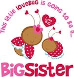 Lovebug Going to be a Big Sister
