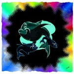 dolphin surf
