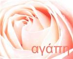 Greek Love Rose