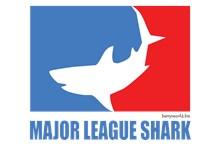 Major League Shark